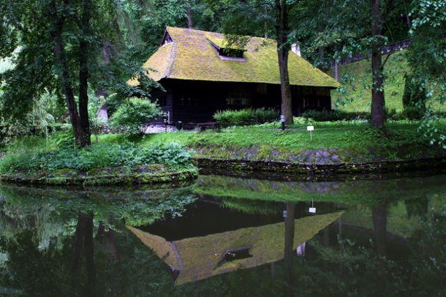 Zdjęcia: Bran, Transylwania, Zielone odbicie, RUMUNIA