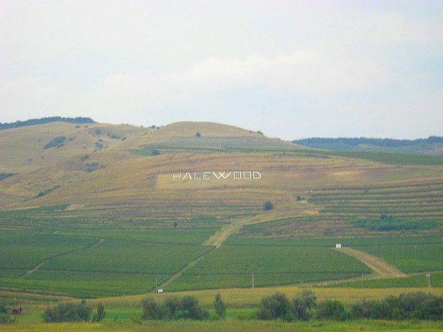 Zdjęcia:  na trasie Brasov - Sighisoara, Transylwania, Halewood Rumunii, RUMUNIA