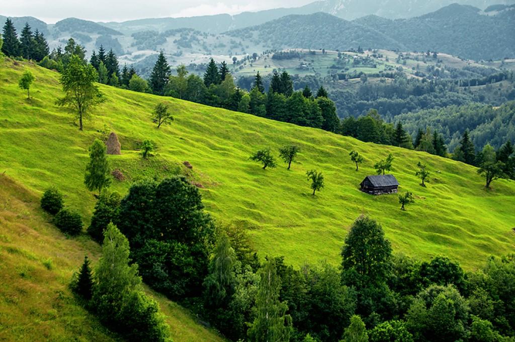 Zdjęcia: okolica Bran, Transylwania, Rumunia sielsko-prowincjonalna, RUMUNIA