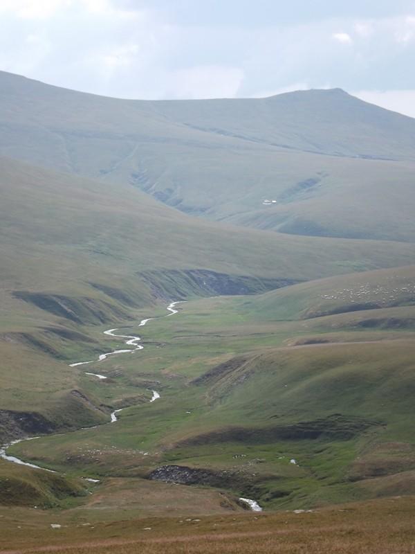 Zdjęcia: Góry Godeanu, Karpaty Południowe, Dolina, RUMUNIA