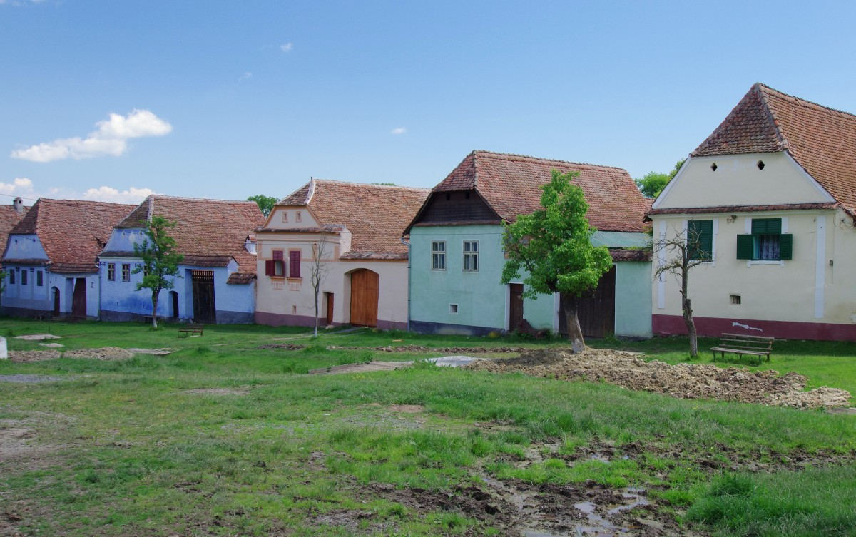 Zdjęcia: Viscri, Transylwania, Przy głównej drodze, RUMUNIA