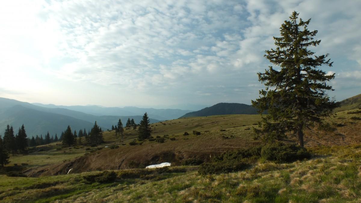 Zdjęcia: Góry Marmaroskie, Góry Marmaroskie, Rumunia, RUMUNIA