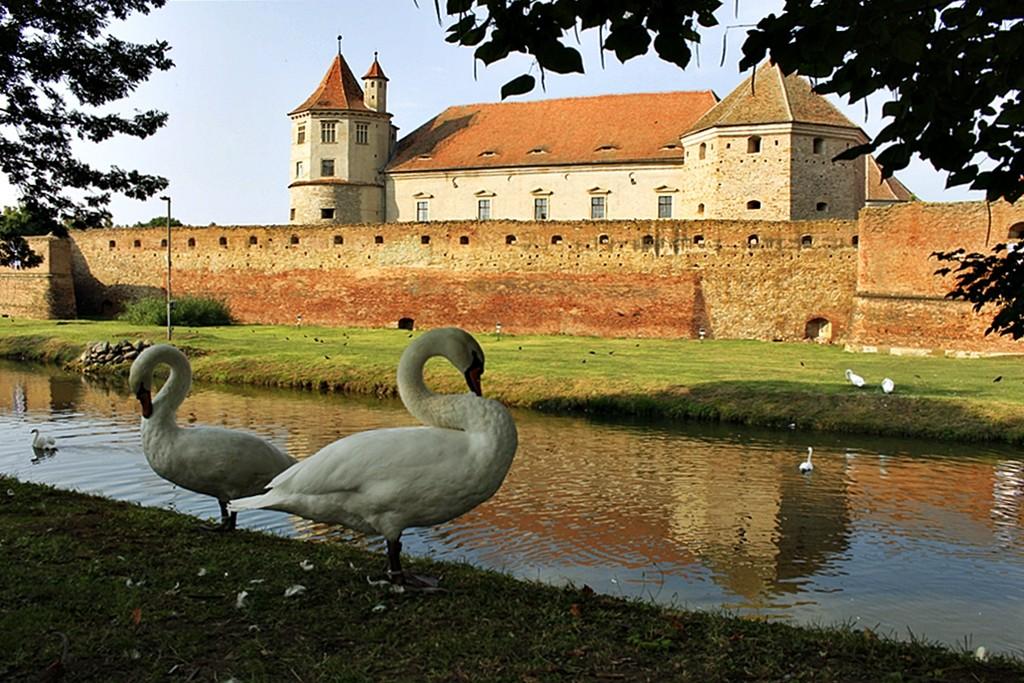 Zdjęcia: Fogarasz, Siedmiogród, Forteca, RUMUNIA