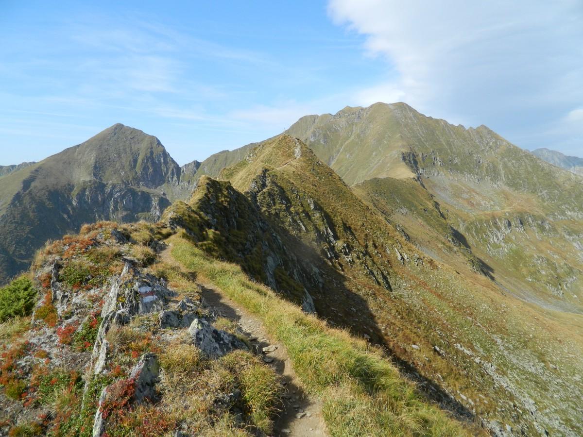 Zdjęcia: gdzieś na szlaku , Karpaty Rumuńskie , w drodze na szczyt , RUMUNIA
