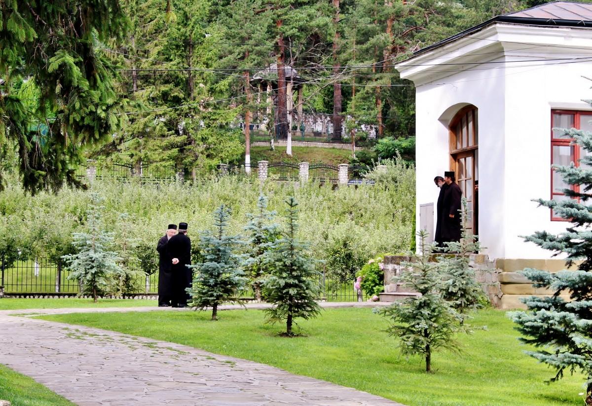 Zdjęcia: Park Narodowy Cozia, Wołoszczyzna, Monastyr Cozia-dwóch na dwóch, RUMUNIA