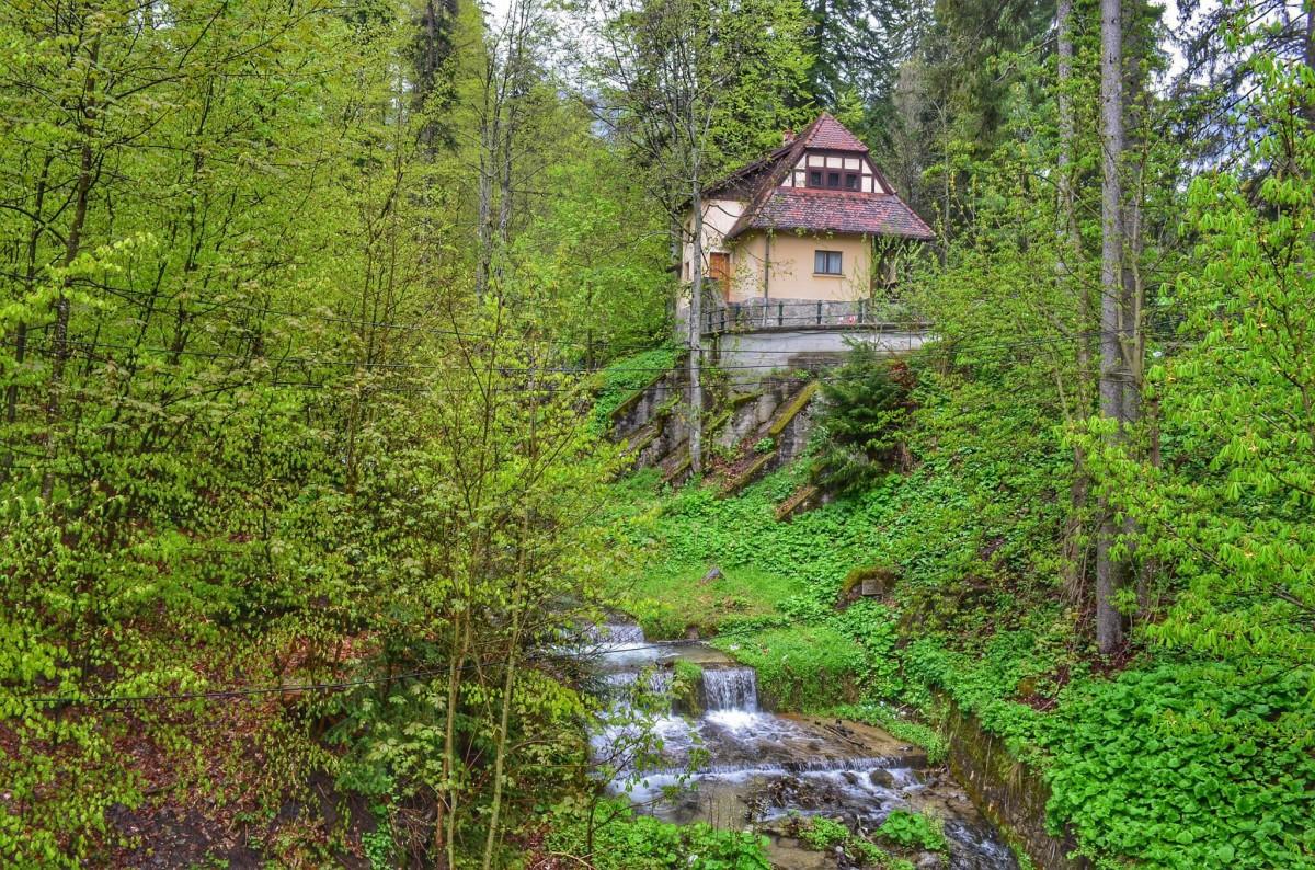 Zdjęcia: Peles, Transylwania, Wiosno przybywaj!, RUMUNIA