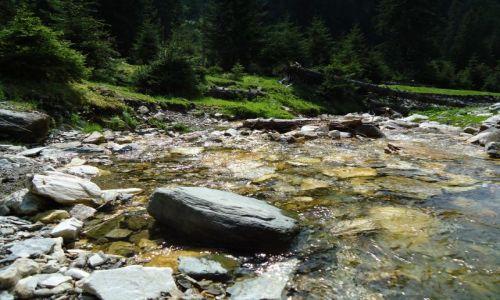 Zdjecie RUMUNIA / Maramuresz / Góry Rodniańskie / Rumunia 2011