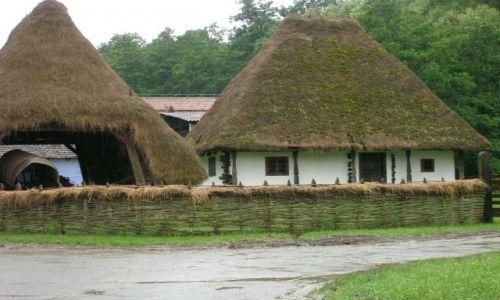 Zdjęcie RUMUNIA / -Transylwania / Dumbrava pod Sibiu / Wieś ze skansenu