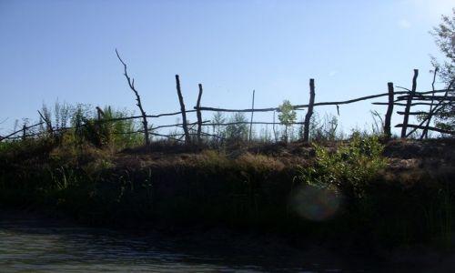 Zdjecie RUMUNIA / Dobrudża / Delta Dunaju / Płynąc w stronę nenufarów
