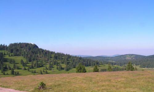 Zdjecie RUMUNIA / brak / CRAULUI -VLADESA - BIHOR  / Rumunia Trek 20