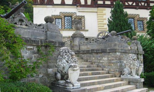 Zdjęcie RUMUNIA / Transylwania / Sinaia / pałacowe schody