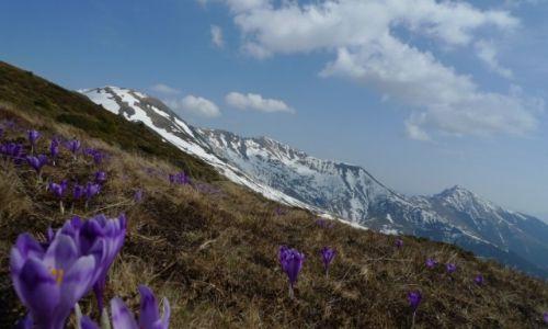 Zdjecie RUMUNIA / Munții Rodnei / Pietrosul / Właściwa perspelktywa.
