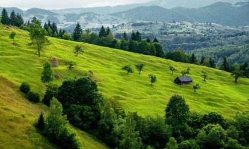 Zdjecie RUMUNIA / Transylwania / okolica Bran / Rumunia sielsko-prowincjonalna