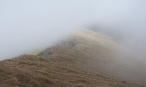 Zdjęcie RUMUNIA / Karpaty Południowe / Fogarasze / Mgła