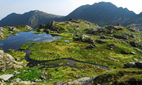 Zdjęcie RUMUNIA / Fogarasze / Podragu / Góry są poza dobrem i złem