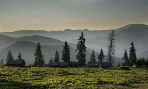 Zdjecie RUMUNIA / Góry Marmaroskie / Maramuresz / Widok na Góry Marmaroskie