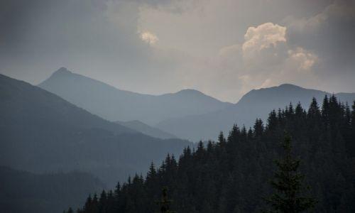 Zdj�cie RUMUNIA / Maramuresz / Maramuresz / Widok na Alpy Rodnia�skie