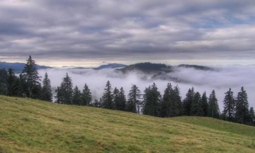 Zdjęcie RUMUNIA / Góry Rodniańskie / Rodniańskie / Góry Rodniańskie