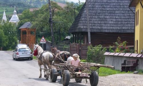 Zdjecie RUMUNIA / Maramuresz / wioska Budesti / Na ulicy