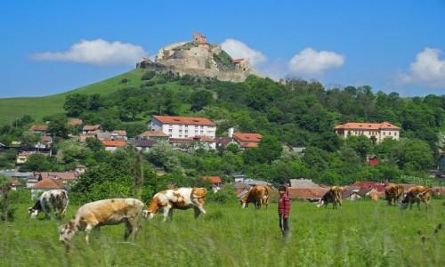 RUMUNIA / Transylwania / Rupea / Średniowieczna forteca