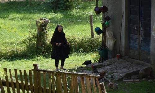 Zdj�cie RUMUNIA / Maramuresz / Sarbi / Wiejskie klimaty