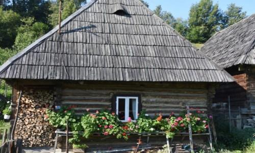 Zdj�cie RUMUNIA / Maramuresz / Poienile Izei / Chatka malowana pelargoniami