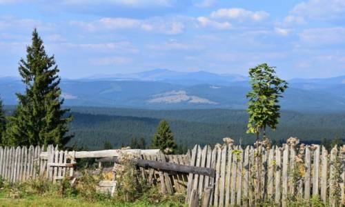Zdj�cie RUMUNIA / Bukowina  / W drodze do Bistrity / Widok na Bukowin�