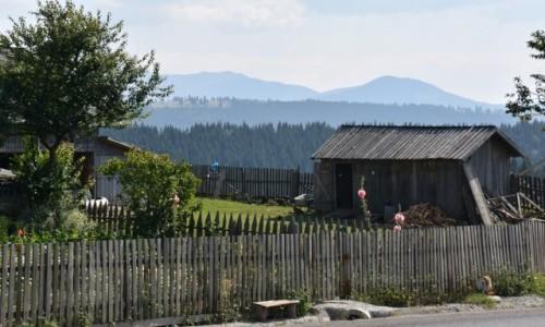 Zdjecie RUMUNIA / Bukowina  / W drodze na Maramuresz / Widziane po dro
