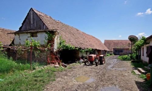 Zdjęcie RUMUNIA / Transylvania / Viscri / Na podwórku
