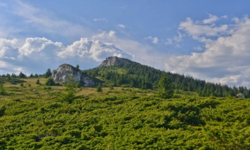 RUMUNIA / Karpaty Mołdawskie / Pasmo Cehlau / Kochajcie góry, są piękne.