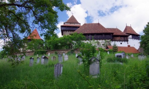Zdjecie RUMUNIA / Transylwania / Viscri / Z minionej epoki
