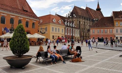 Zdjęcie RUMUNIA / Siedmiogród / Braszów / Ot, życie
