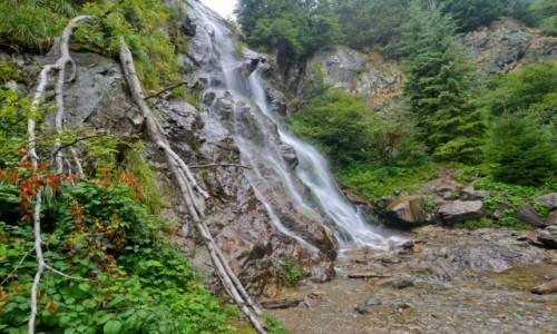 Zdjecie RUMUNIA / Park Narodowy Apuseni / Arieseni / Cascada Varciorog