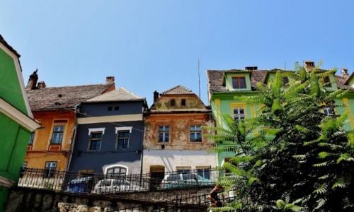 Zdjecie RUMUNIA / Siedmiogród / Sighișoara / Kolorowe kamieniczki