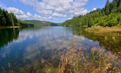 Zdjecie RUMUNIA / Karpaty Południowe / Jezioro Vidra / I do tego wiatr wiejący prosto w twarz