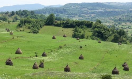 Zdjecie RUMUNIA / Marmarosz / - / Krajobraz Maramuresz