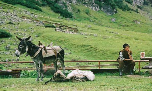 Zdjecie RUMUNIA / Bucegi / przed schroniskiem Malaesti / W górach...