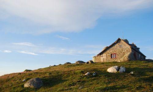 Zdjęcie RUMUNIA / Transylwania / Góry BUCEGI / Cabana Omul (2507m n.p.m.)