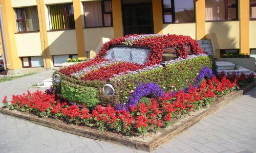Zdjecie RUMUNIA / Bukowina / Guru Humorului / Samochód marzeń... oczywiście!