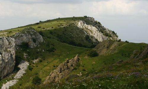 Zdjecie RUMUNIA / Transylwania / Niedaleko Rimetei / KONKURS