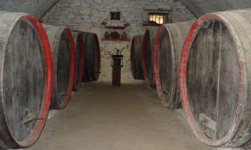 Zdjecie RUMUNIA / Alba (Siedmiogród) / Calnic / Zamek w Calnicu - piwnice z winem