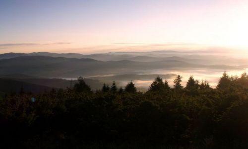 Zdjecie RUMUNIA / Bihor / Góry Apuseni - pasmo Bihor / Dolina we mgle - wcześnie rano