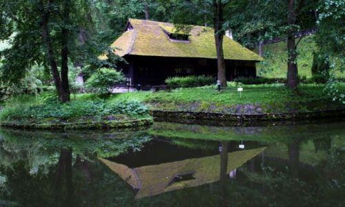 Zdjęcie RUMUNIA / Transylwania / Bran / Zielone odbicie