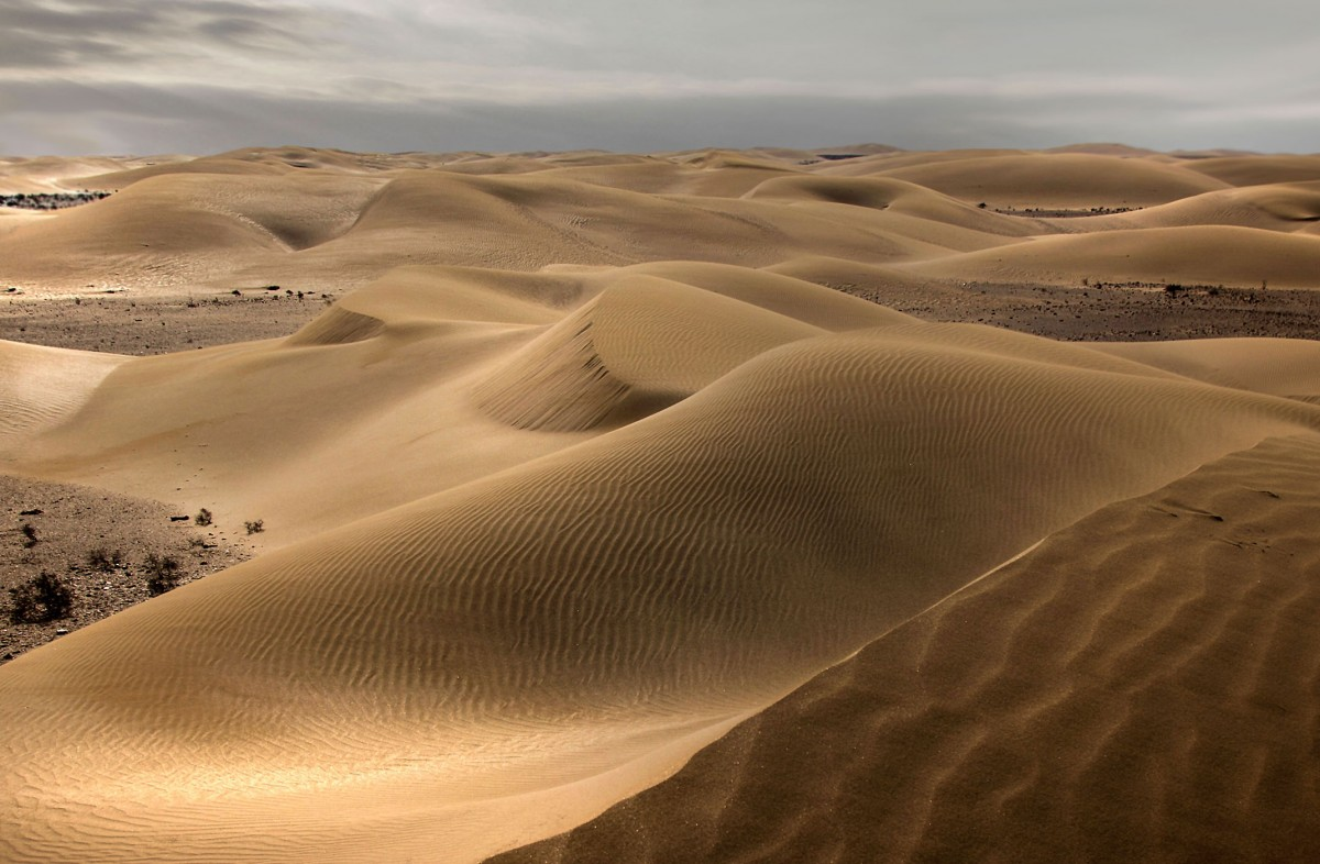 Zdjęcia: gdzieś w piaskach pustyni, Al-Ujun-As-Sakija al-Hamra, Ponuro, SAHARA ZACHODNIA