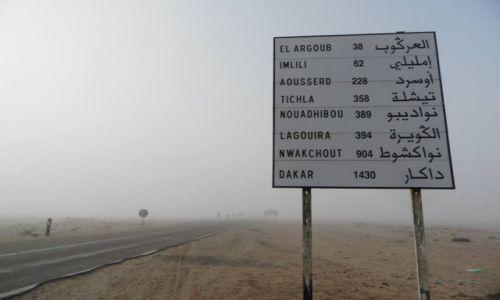 Zdjęcie SAHARA ZACHODNIA / sahara zachodnia / sachara zachodnia / daleko jeszcze?