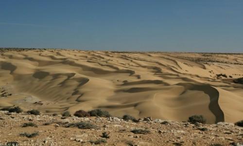 Zdjęcie SAHARA ZACHODNIA / Sahara / Hagunia / Wszędzie piach