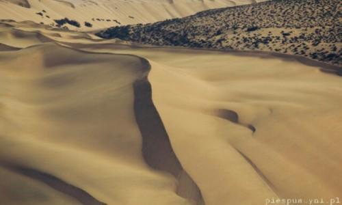 Zdjecie SAHARA ZACHODNIA / Sahara / Sahara / Fala piasku