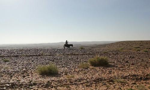Zdjecie SAHARA ZACHODNIA / Sahara / Sahara / Wędrowca