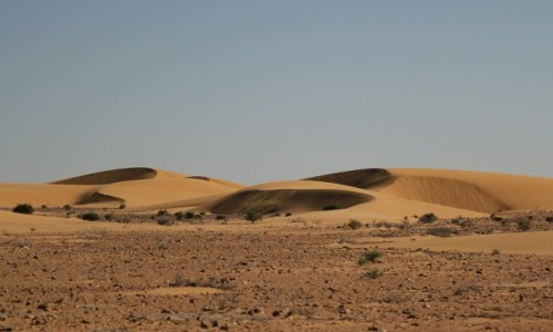 Zdjęcie SAHARA ZACHODNIA / Sahara / Sahara / Sahara