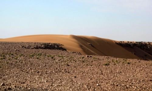 SAHARA ZACHODNIA / Laâyoune-Sakia El Hamra / gdzieś w piaskach pustyni / Na saharyjskim klifie